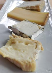 Variedad de quesos