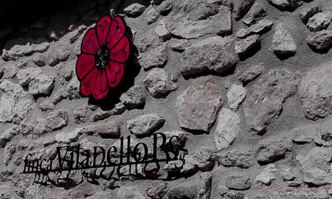 Finca Viladellops, vinostelúricos