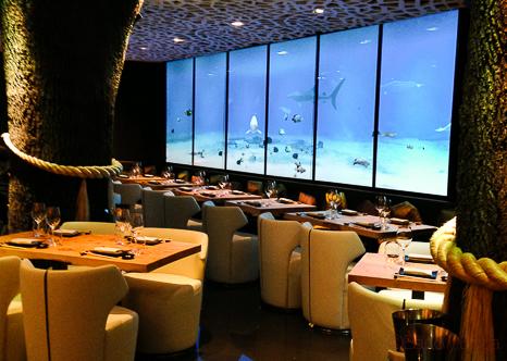 yubari-restaurante-japones-baco-y-boca-bacoyboca-27