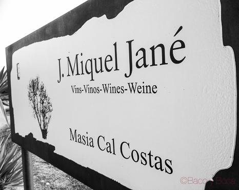 """Bodegas Miquel Jané, """"vins demuntanya"""""""