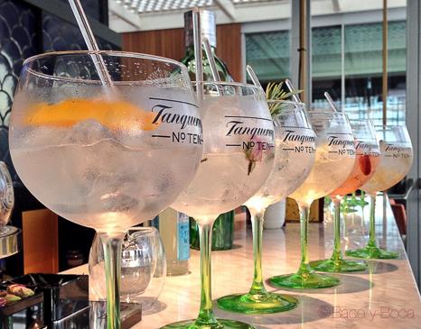 6 gin tonics Tanqueray n 10 ocean club baco y boca