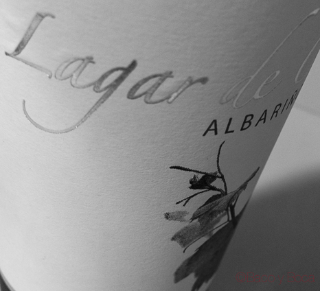 Lagar de Costa 2014    (DO Rias Baixas)