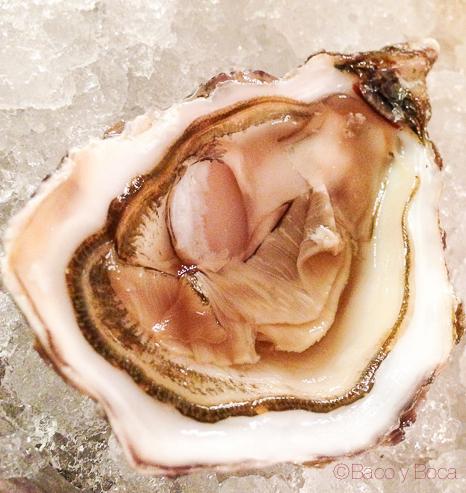 ostra Brasserie Flo baco y boca