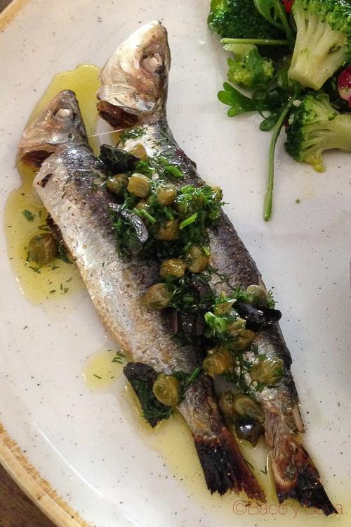 sardinas la esquina baco y boca