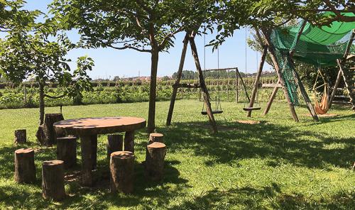 jardin horta ecologica pla de munt palafolls benvinguts a pages baco y boca